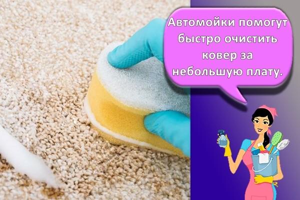 мытье ковра дома