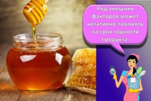 Как и где лучше хранить мед в домашних условиях, температура и сроки