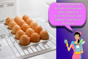 Сколько могут храниться сырые яйца в холодильнике, способы и сроки, как продлить