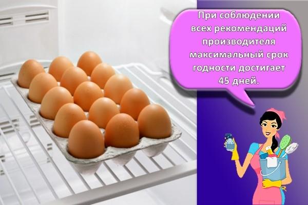 Как хранить свежие яйца