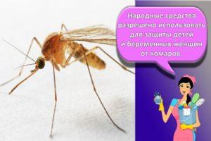 Как быстро избавиться от комаров в квартире и доме народными и химическими средствами, рейтинг лучших приборов
