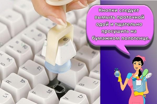 кнопки следует вымыть проточной водой и тщательно просушить на бумажном полотенце.