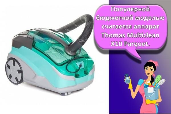 Thomas Multiclean X10 Parquet