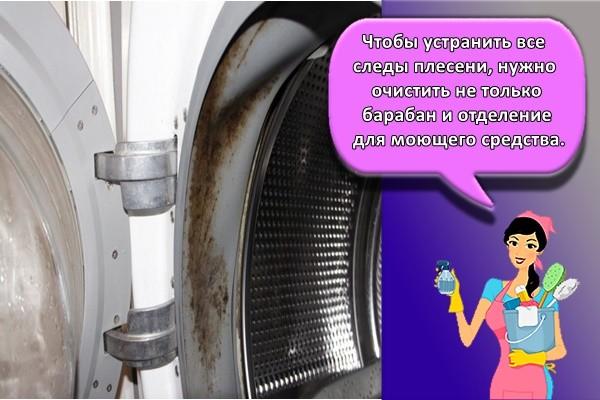 Чтобы устранить все следы плесени, нужно очистить не только барабан и отделение для моющего средства.