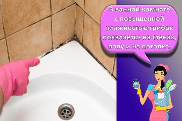 плесень на ванной