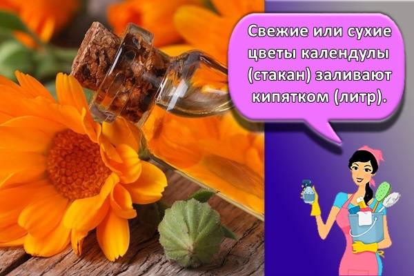 Свежие или сухие цветы календулы (стакан) заливают кипятком (литр).