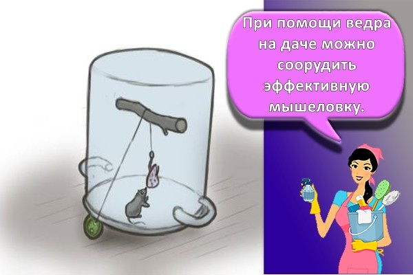 ловушка для мышей из кастрюли