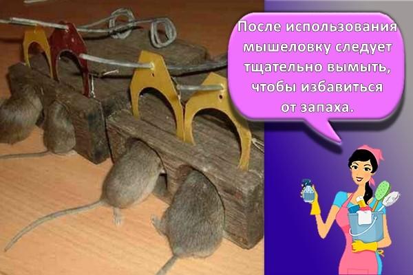 ловушка для крыс