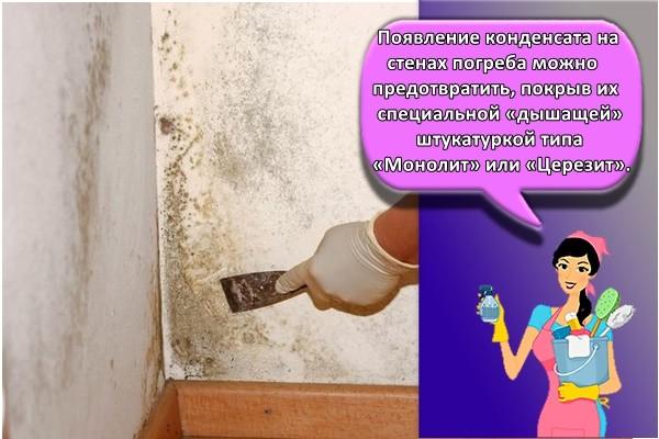 Появление конденсата на стенах погреба можно предотвратить, покрыв их специальной «дышащей» штукатуркой типа «Монолит» или «Церезит».