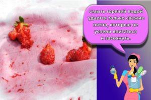 22 лучших средства, чем можно отстирать ягоды с одежды в домашних условиях