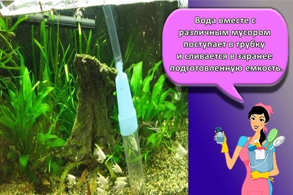 Вода вместе с различным мусором поступает в трубку и сливается в заранее подготовленную емкость.