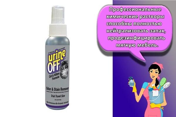 Профессиональные химические растворы способны полностью нейтрализовать запах, продезинфицировать мягкую мебель.