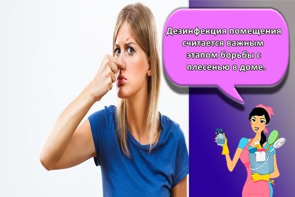 Советы хозяйкам: как убрать запах сырости в частном доме