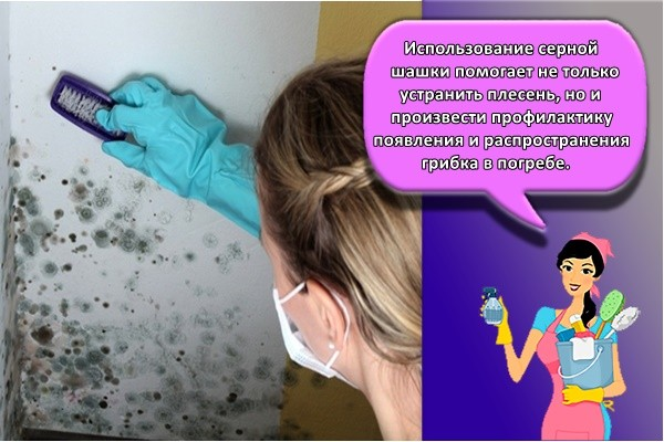 Использование серной шашки помогает не только устранить плесень, но и произвести профилактику появления и распространения грибка в погребе.