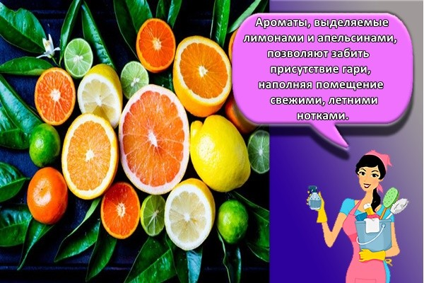 Ароматы, выделяемые лимонами и апельсинами, позволяют забить присутствие гари, наполняя помещение свежими, летними нотками.