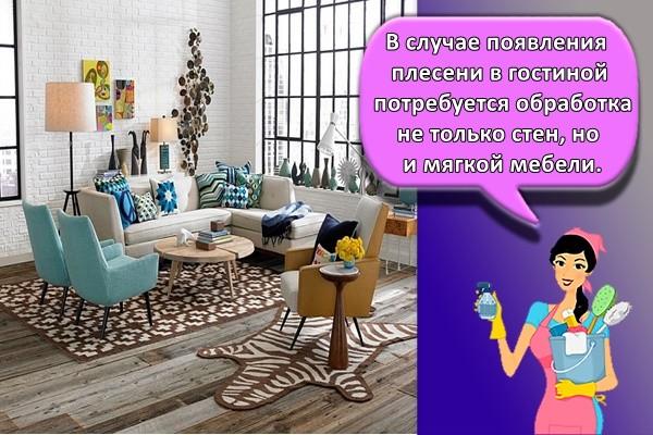 В случае появления плесени в гостиной потребуется обработка не только стен, но и мягкой мебели.