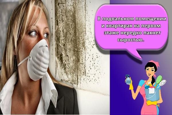 В подвальном помещении и квартирах на первом этаже нередко пахнет сыростью.
