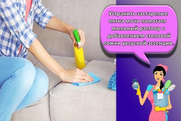 Устранить застарелые пятна мочи помогает мыльный раствор с добавлением столовой ложки уксусной эссенции.