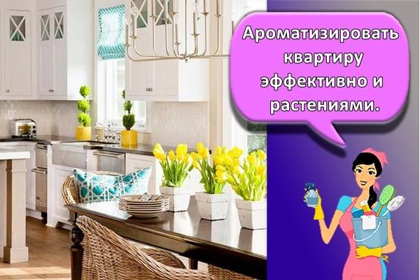 Ароматизировать квартиру эффективно и растениями.