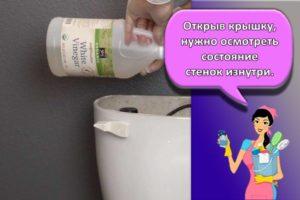 25 лучших средств для очистки бачка унитаза внутри в домашних условиях