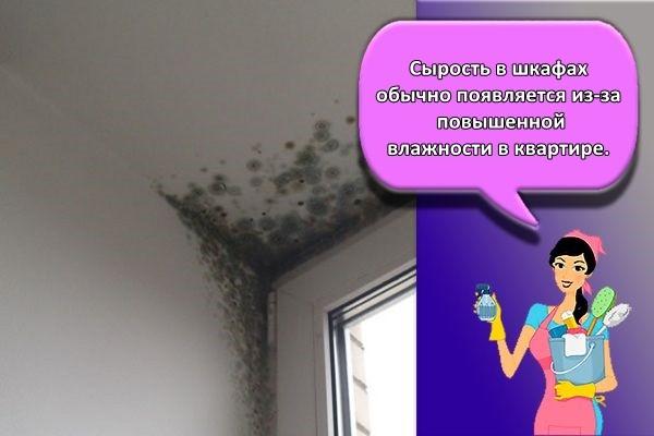 сырость на потолке