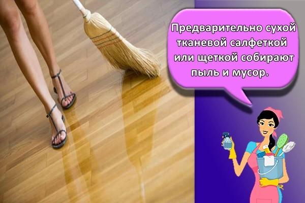 Предварительно сухой тканевой салфеткой или щеткой собирают пыль и мусор.