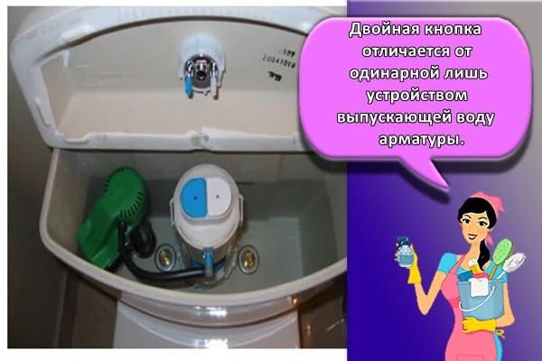 Двойная кнопка отличается от одинарной лишь устройством выпускающей воду арматуры.