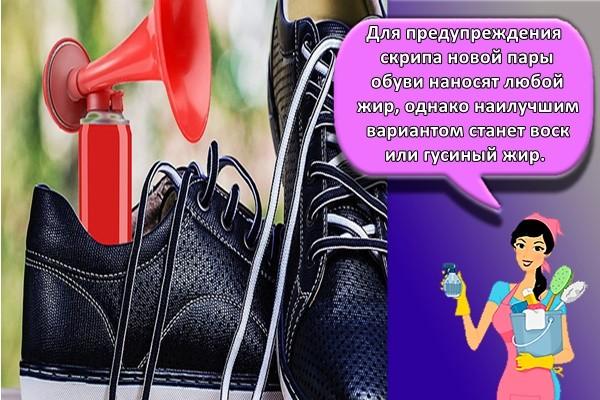 для предупреждения скрипа новой пары обуви наносят любой жир, однако наилучшим вариантом станет воск или гусиный жир