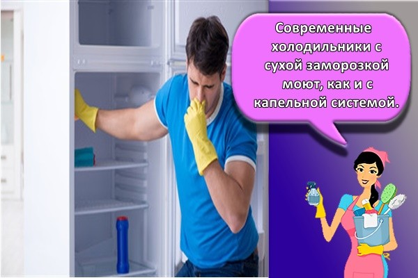 Современные холодильники с сухой заморозкой моют, как и с капельной системой.