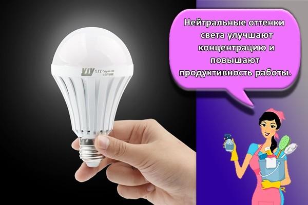 Нейтральные оттенки света улучшают концентрацию и повышают продуктивность работы.