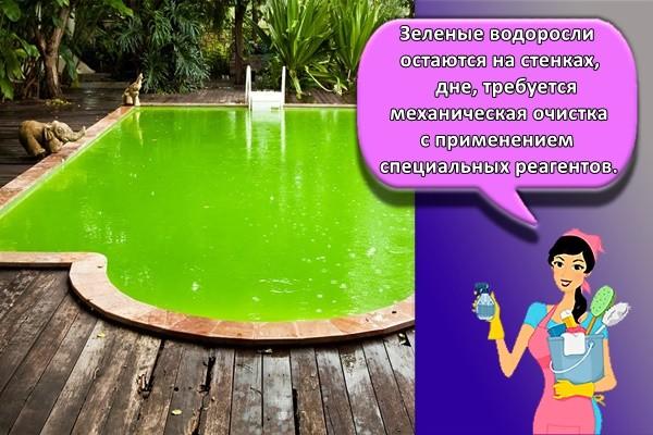 Зеленые водоросли остаются на стенках, дне, требуется механическая очистка с применением специальных реагентов.