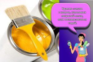 ТОП 17 способов, как быстро избавиться от запаха краски в квартире после покраски