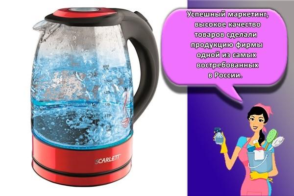 Успешный маркетинг, высокое качество товаров сделали продукцию фирмы одной из самых востребованных в России.