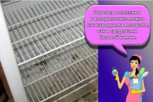 ТОП 20 методов и средств, чем можно отмыть плесень в холодильнике