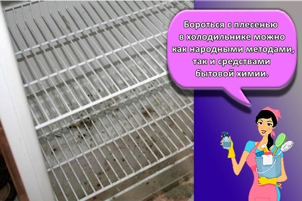 Бороться с плесенью в холодильнике можно как народными методами, так и средствами бытовой химии.
