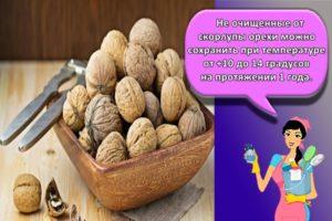 Как и сколько можно хранить очищенные грецкие орехи в домашних условиях