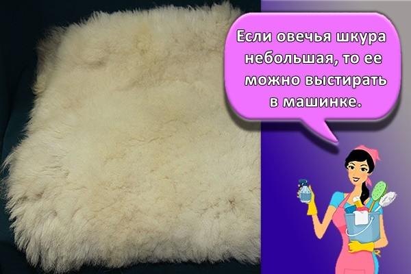 Если овечья шкура небольшая, то ее можно выстирать в машинке.