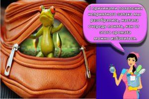 ТОП 16 методов, как быстро избавиться от неприятного запаха от новой сумки