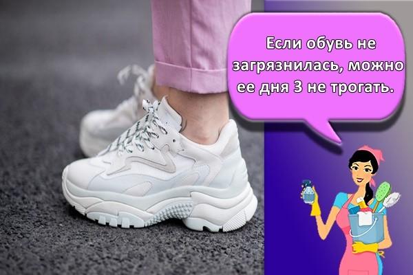 Если обувь не загрязнилась, можно ее дня 3 не трогать.