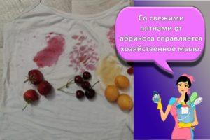 Правила и обзор лучших средств, чем с одежды отстирать абрикос