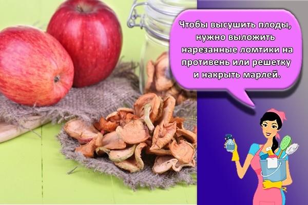 Чтобы высушить плоды, нужно выложить нарезанные ломтики на противень или решетку и накрыть марлей.