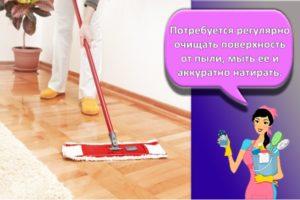 Лучшие средства, чем после покраски помыть пол и правила по уходу