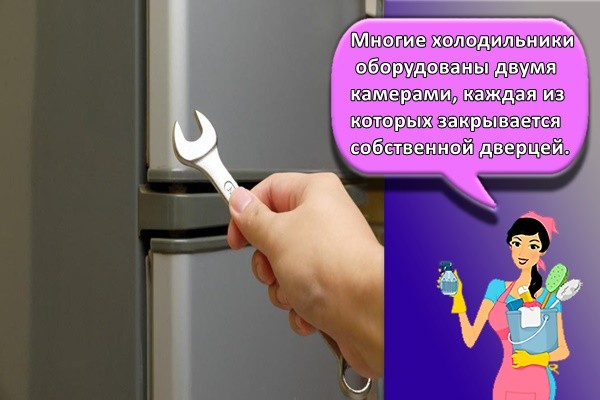 Многие холодильники оборудованы двумя камерами, каждая из которых закрывается собственной дверцей.
