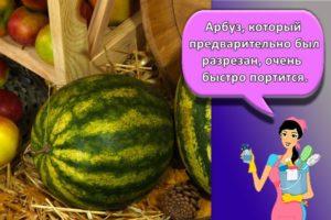 Сколько в холодильнике можно хранить разрезанный арбуз