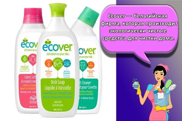 Ecover — бельгийская фирма, которая производит экологически чистые средства для чистки дома.