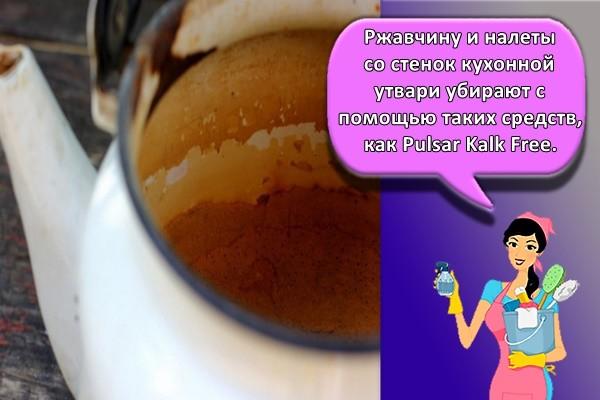 Ржавчину и налеты со стенок кухонной утвари убирают с помощью таких средств, как Pulsar Kalk Free.
