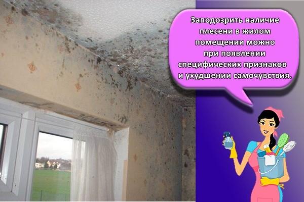 Заподозрить наличие плесени в жилом помещении можно при появлении специфических признаков и ухудшении самочувствия.