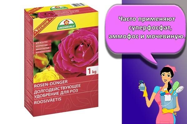 Часто применяют суперфосфат, аммофос и мочевину
