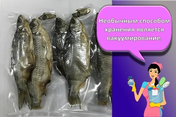 рыба в вакууме