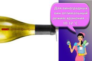 Как правильно хранить дома вино, условия и сроки для разных видов